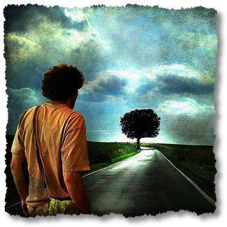 Buah Kesabaran Menuju Keberhasilan » Motivasi-Kebahagiaan